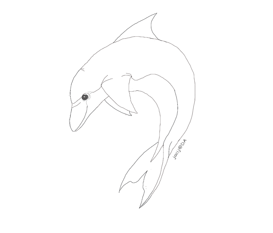 Line Art Dolphin : Cartoon dolphin lineart by jacij on deviantart