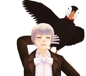 AskIcelandorMrPuffin's Profile Picture