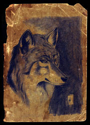 Wolf by Kristanian-Gallery