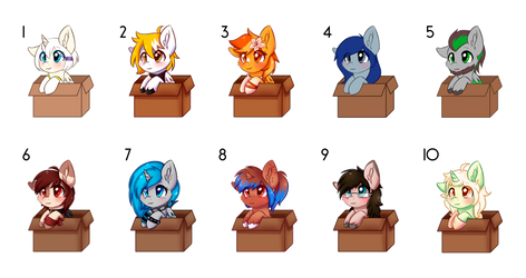 Pony in a Box
