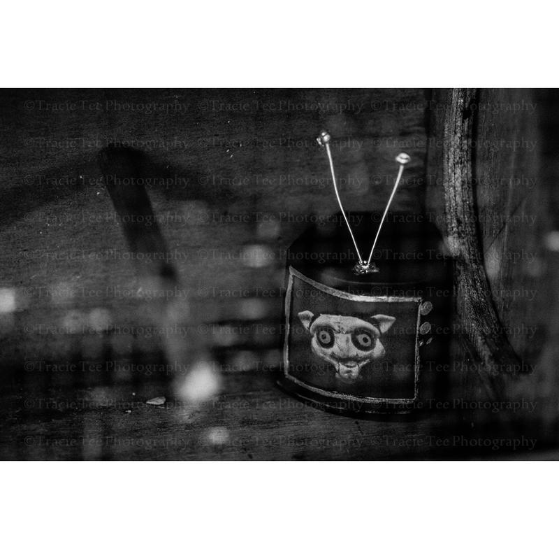 Jigsaw by tracieteephotography