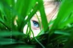 I See Little People