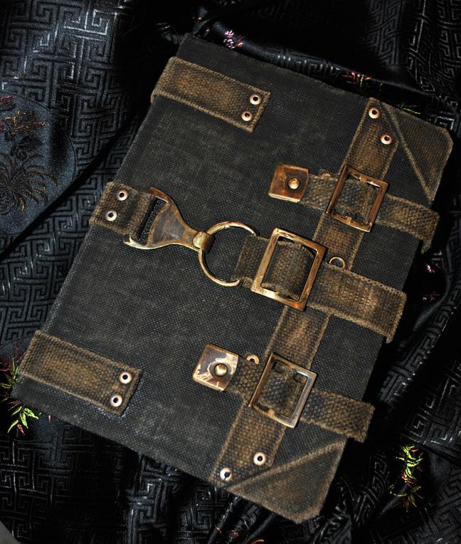 Field Journal by silverbane