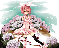 AT: Wonderland is Far Away by Merollet