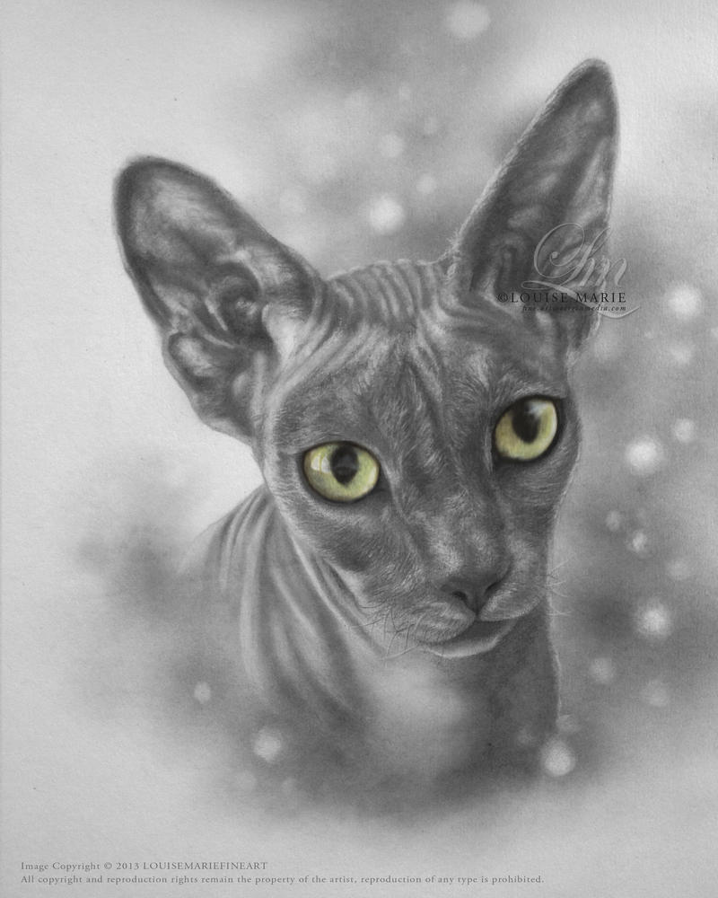 Dobby by LouiseMarieFineArt