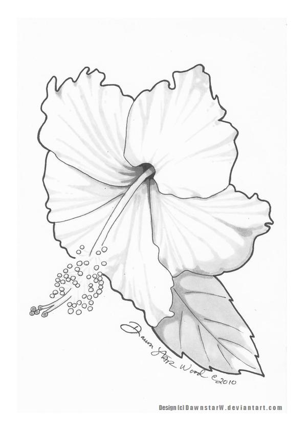 Hibiscus tattoo design final by dawnstarw on deviantart for Hibiscus flower tattoo sketches