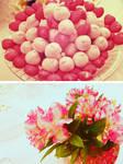 Bon Bon and Flowers