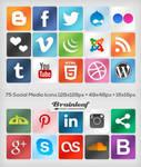 Classic Social Media Icons