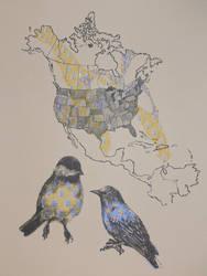 Chickadee and Starling by sporkychan