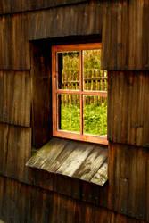 Window by Zucovo