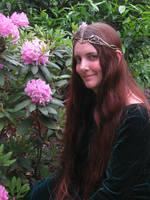 The Fairy Queen by DelphineHaniel