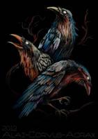 3 ravens by Alaiaorax