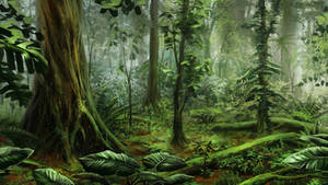 Subtropical forest by Alaiaorax