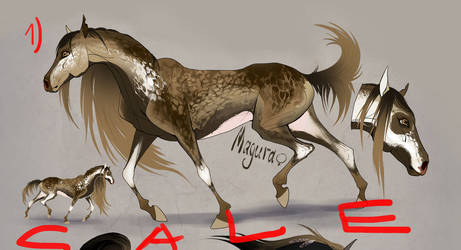 Horse adopt by Alaiaorax