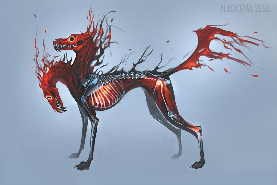 Emberdog design