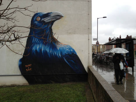 Prtichards Road Crow. Hackney. London.
