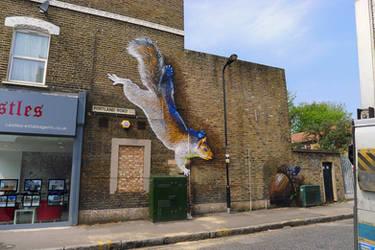 Portland Road Squirrel. Seven Sisters. London by Boe-art