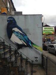 Blackstock Road Magpie by Boe-art
