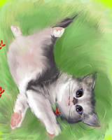DAILY PAINT :  Mister cat #68 by Dan-zodiac