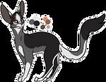 cat adopt (closed)
