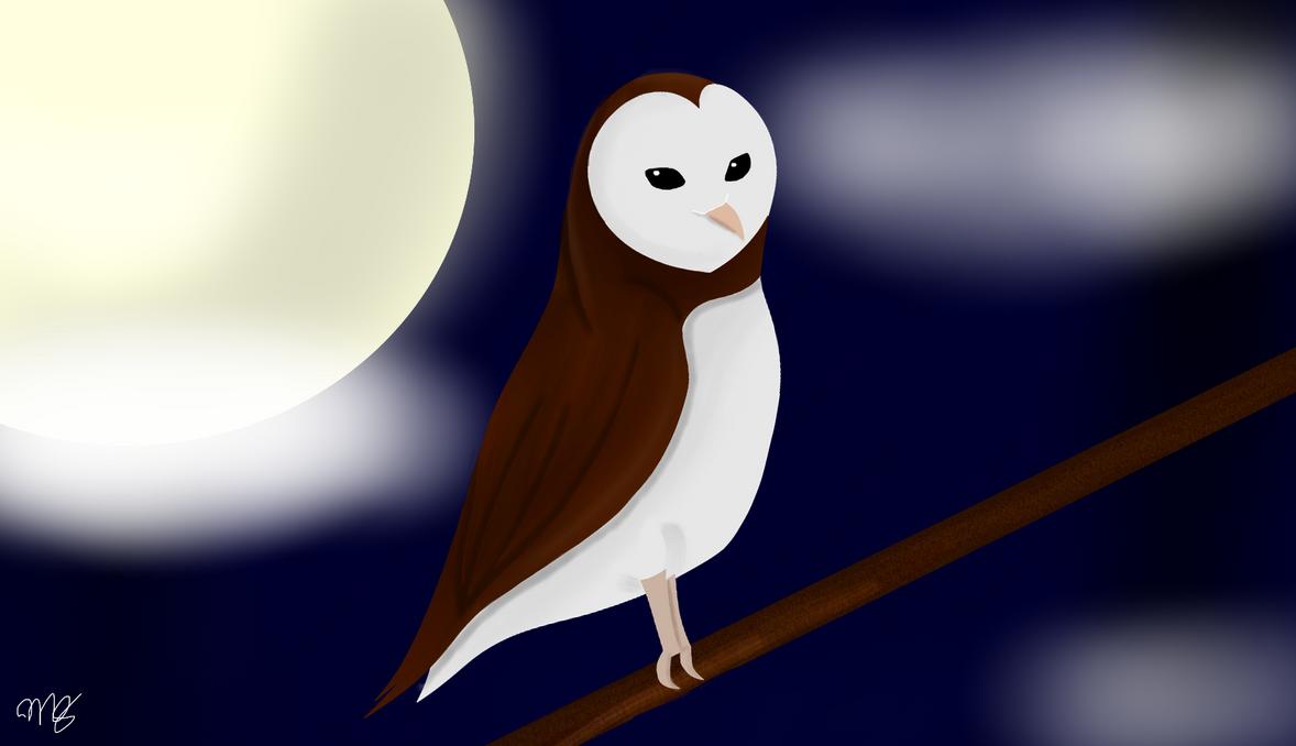 Barn Owl by drawingwolf17