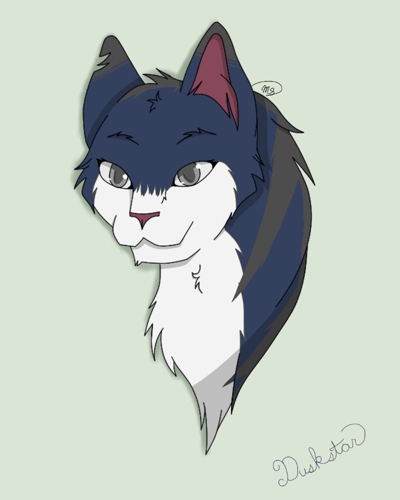 Duskstar of DarkClan by drawingwolf17