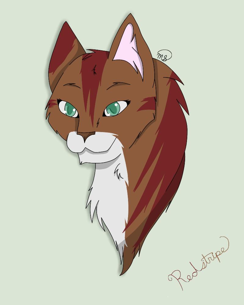 Redstripe of DarkClan by drawingwolf17