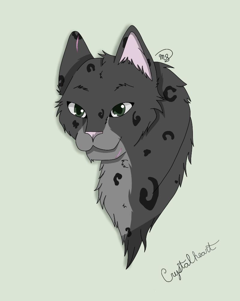 Crystalheart of DarkClan by drawingwolf17