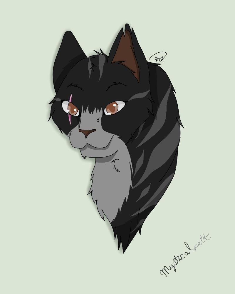 Mysticalpelt of DarkClan by drawingwolf17