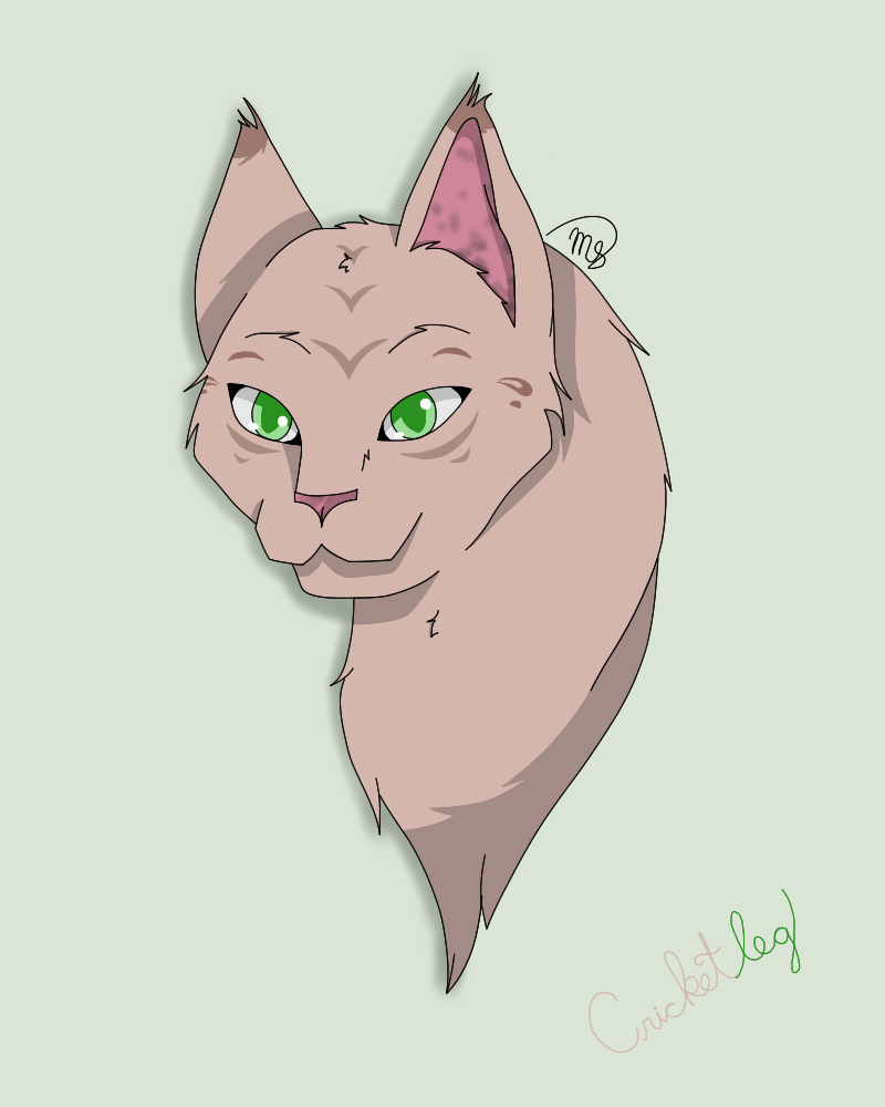 Cricketleg (Request) by drawingwolf17