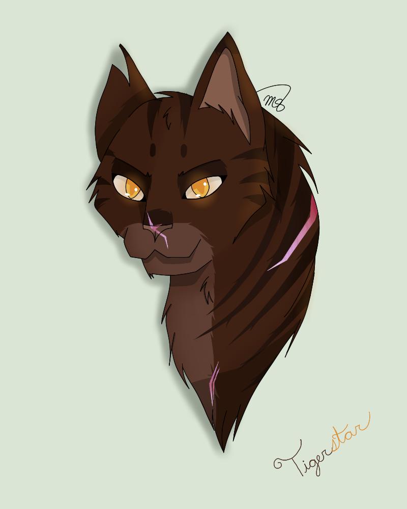 Tigerstar (Request) by drawingwolf17