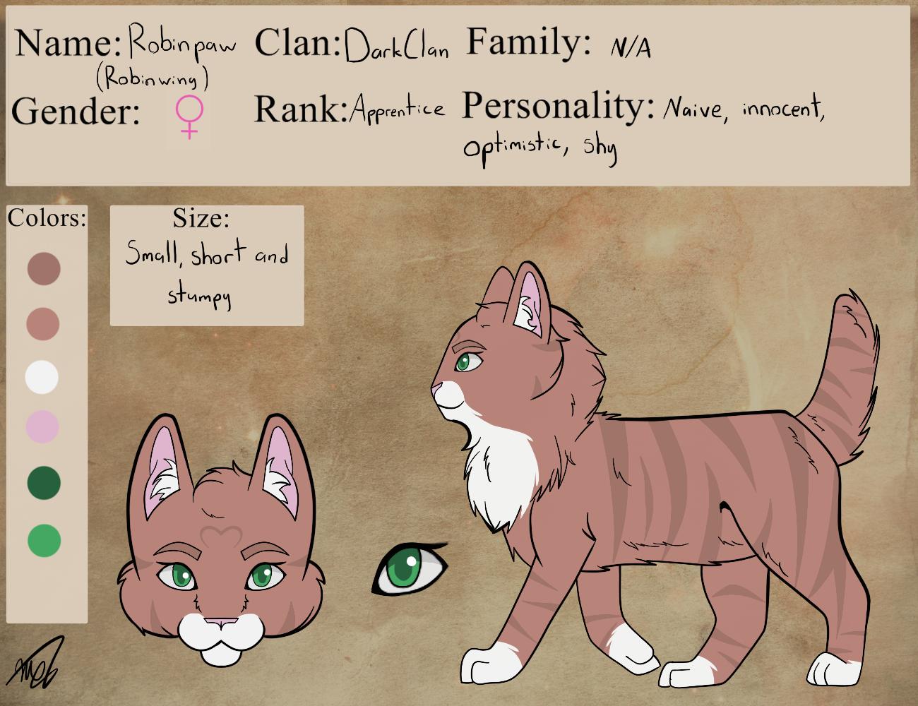 Robinpaw Reference by drawingwolf17