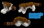 Preset Auction - Warrior Cat - OPEN