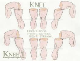 Knee 1 - Rotation by jasonwangart