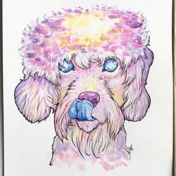 Galaxy West Highland White Terrier