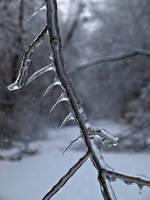 Thorncicles by Latrodectus-Pallidus