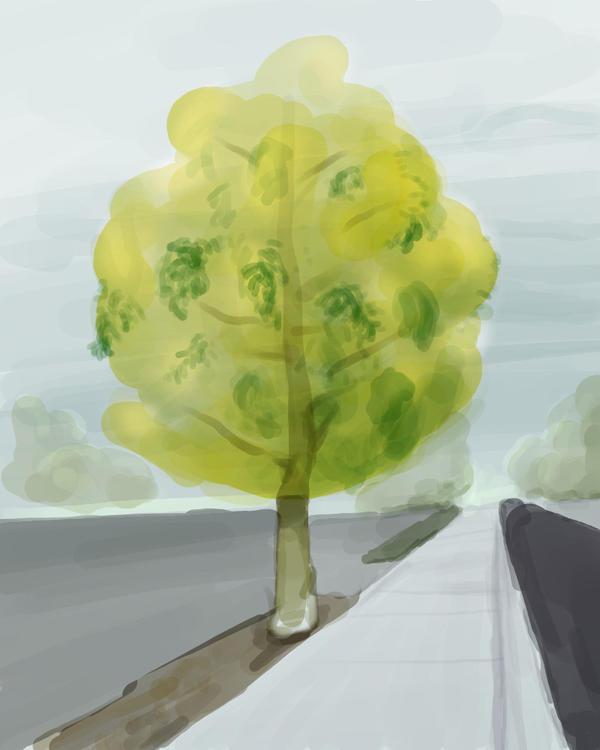 Autumn Tree by monking