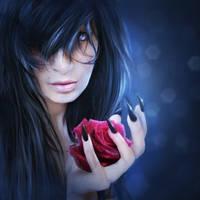 RedRose by violettQueen