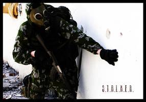 S.T.A.L.K.E.R. by miniGRD