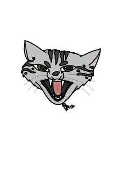 Snarling Cat Colored