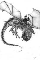 KS - Dragonrider by Chaos-Flower
