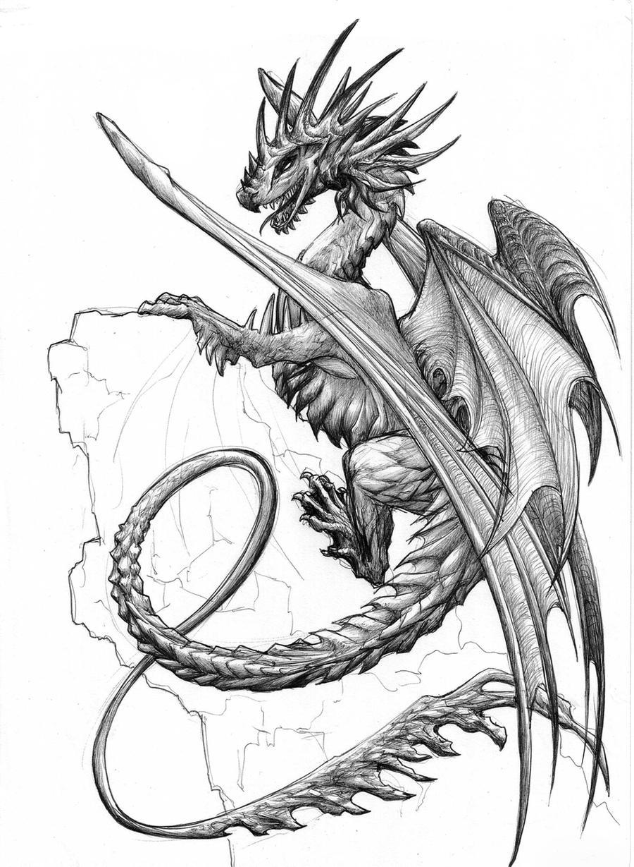 Spike Dragon By Chaos Flower On DeviantArt