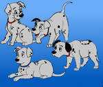 Dalmatian Puppies :D