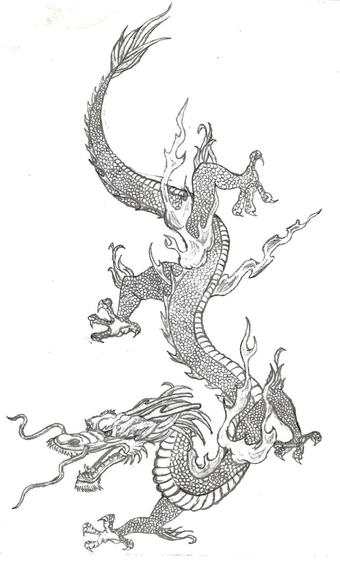 Chinese Dragon Pencil Drawings | www.imgkid.com - The ...