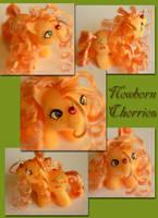 Newborn Cherries- A custom MLP by wylf