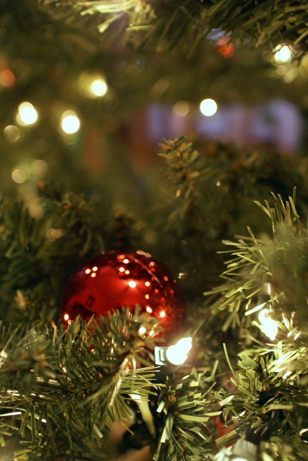O Christmas Tree by wylf