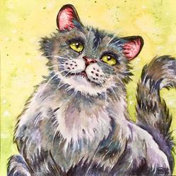Cat 104