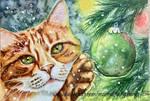 December cat 2