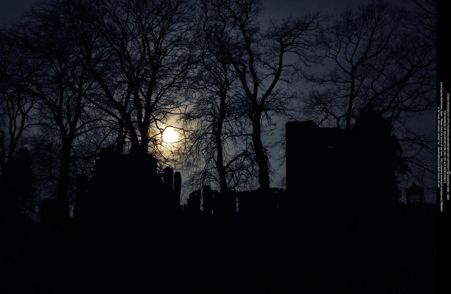 Noontime Night by Elandria