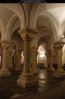 A Forest of Columns 2 by Elandria